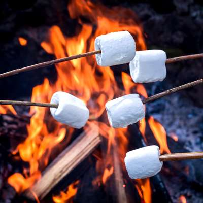 bonfire marshmallows