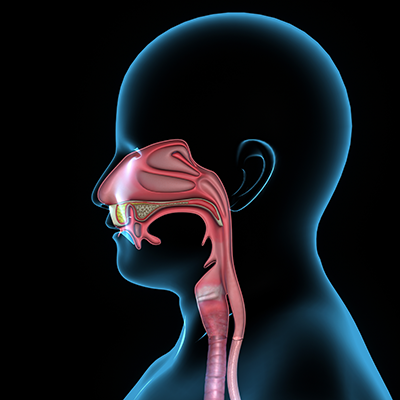 Swallowing and voice disorders